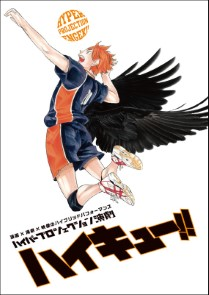 Haikyu!! The Movie